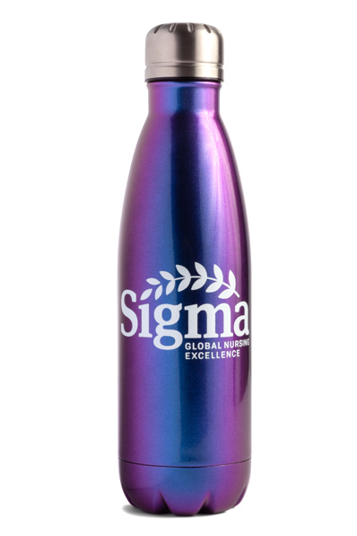 Insulated 17oz Bottle